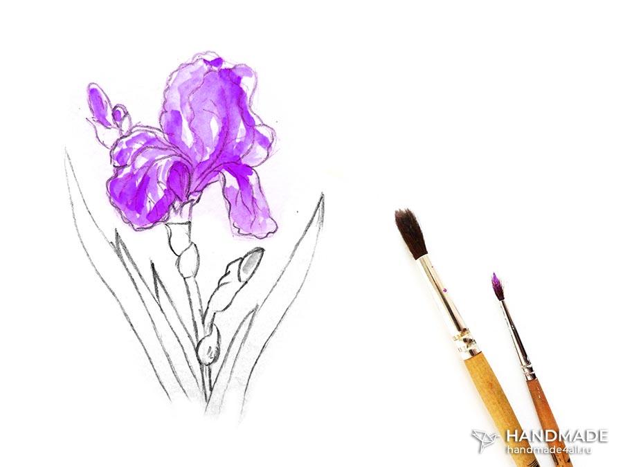 Как нарисовать ирисы акварелью